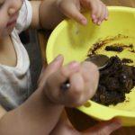 1才11カ月の娘と一緒に初めてお菓子作りをしたよ♪