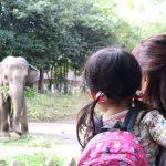 2才でズーラシアデビュー!動物園で動物と触れあってきたよ